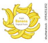 banana fruit hand drawn label....   Shutterstock .eps vector #1954251352