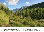mountain valley in summer... | Shutterstock . vector #1954814422