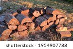 Pile Of Wood That Has Been...