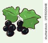 source of vitamin c. vector... | Shutterstock .eps vector #1955020648