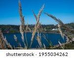 Crater Lake Called Lake Averno...