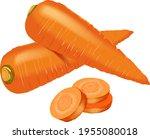 carrot set for banners  flyers. ... | Shutterstock .eps vector #1955080018