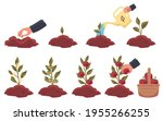 sprout cultivation tomato from...   Shutterstock .eps vector #1955266255