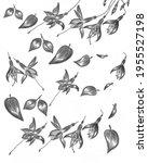 abstract illustration of... | Shutterstock . vector #1955527198