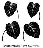 tropical monstera leaves vector ... | Shutterstock .eps vector #1955674948