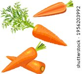 the cartoon style of carrots... | Shutterstock .eps vector #1956203992