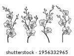 set of orchid flower.... | Shutterstock .eps vector #1956332965