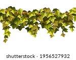 ivy seamless border. liana...   Shutterstock .eps vector #1956527932