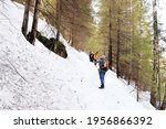 A Tourist On A Hike In The...