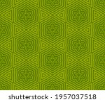 abstract fantasy striped thin... | Shutterstock .eps vector #1957037518