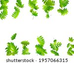forest foliage beautiful vector ... | Shutterstock .eps vector #1957066315