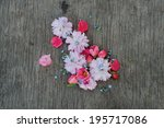 forget me not  quince and... | Shutterstock . vector #195717086