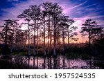 Reflections Of A Sunset In The...