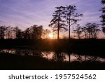 Landscape Of A Swamp Sunset In...