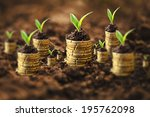 golden coins in soil with young ... | Shutterstock . vector #195762098