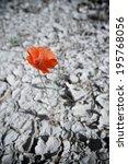 background in high resolution... | Shutterstock . vector #195768056