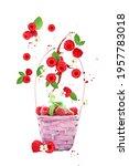 Raspberry Berries Levitating On ...