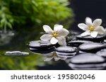 Spa Still With Gardenia Flower...