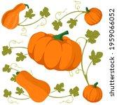 orange pumpkins set with leaf... | Shutterstock .eps vector #1959066052