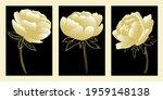 set of golden peonies. flowers...   Shutterstock .eps vector #1959148138