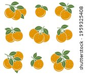 oranges set. collection icons... | Shutterstock .eps vector #1959325408