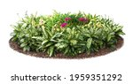 Cut Out Flowerbed. Plants And...