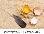 Broken Egg On Straw. Eggshell...