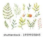 watercolor illustration....   Shutterstock . vector #1959935845