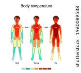body temperature and... | Shutterstock .eps vector #1960089538