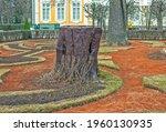 Peterhof  Russia   April 10 ...