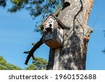 Beautiful Homemade Birdhouse On ...