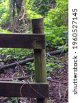 Rustic Fence With Green Moss...