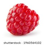 Raspberry Isolated. One Ripe...