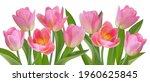 set of spring flowers tulips.... | Shutterstock .eps vector #1960625845