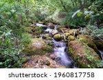 long exposure smooth flowing...   Shutterstock . vector #1960817758
