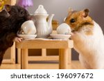 Two Hamsters In A Room Drinkin...