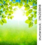 vector illustration summer... | Shutterstock .eps vector #196203848