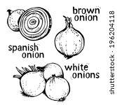 onion cartoon set