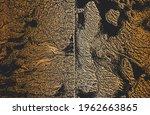 luxury black golden metal... | Shutterstock .eps vector #1962663865