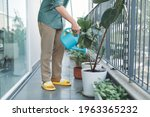 Man Watering House Plants On...