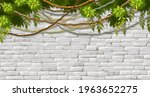 wall  branches liana  ivy....   Shutterstock .eps vector #1963652275