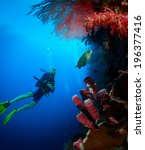 Scuba Diver Exploring Tropical...