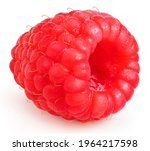 Red Raspberry Isolated On White ...