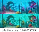 ocean or sea underwater...