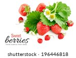fresh strawberry with green... | Shutterstock . vector #196446818