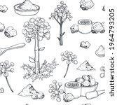 hand drawn asafoetida hing ....   Shutterstock .eps vector #1964793205