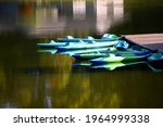 Group of aqua and blue kayaks are tied to a wooden dock near Duck Island in the Warriors Path State Park near Kingsport, Tennessee.