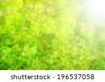 abstract green background | Shutterstock . vector #196537058