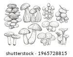 mushrooms isolated sketch set.... | Shutterstock .eps vector #1965728815