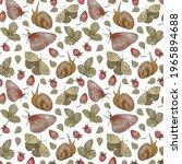 Strawberry  Butterfly  Snail...